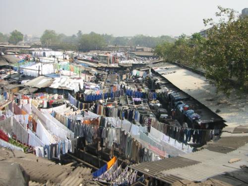 1. Bombay - Waesche 01