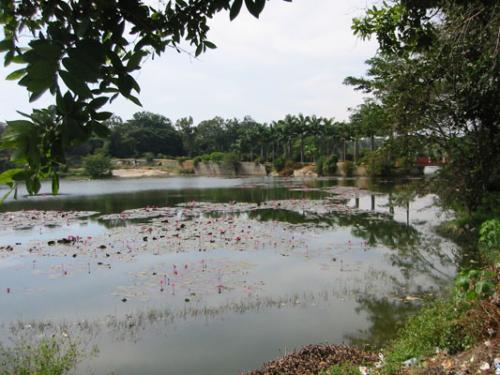2. Bangalore - Botanischer Garten 01