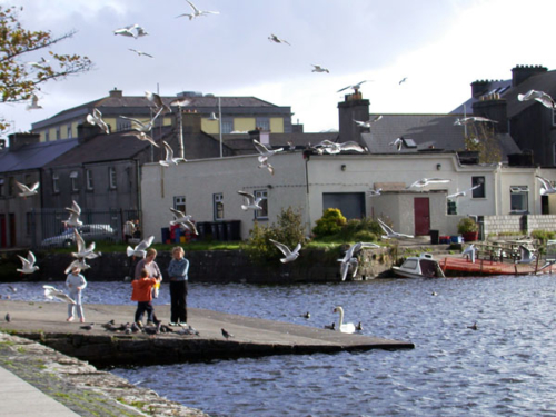 DSCN0499 - Galway
