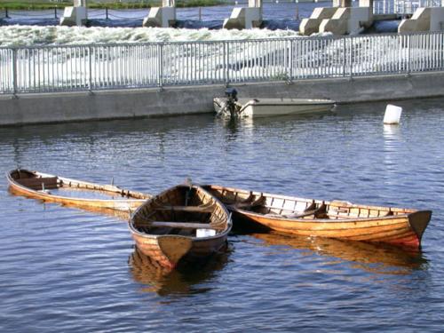 DSCN0510 - Galway