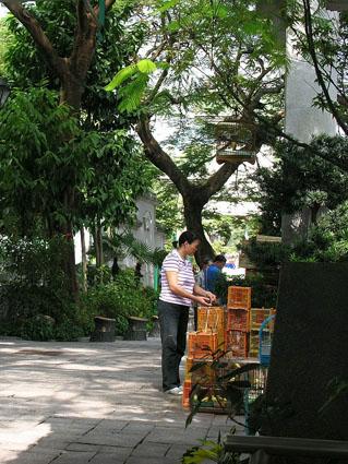 309 - Hongkong - Kowloon Bird Garden